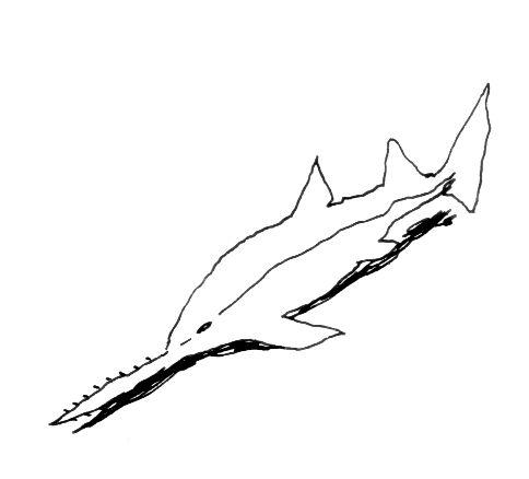 Requins scies - Coloriage de requin a imprimer ...