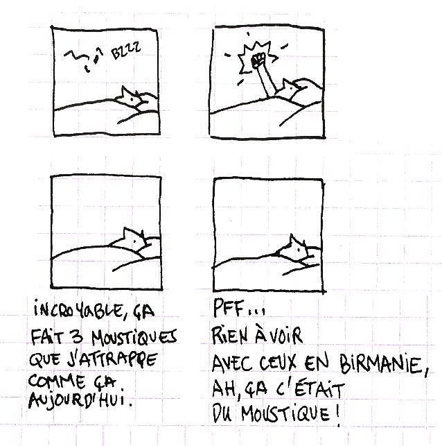 moustique3